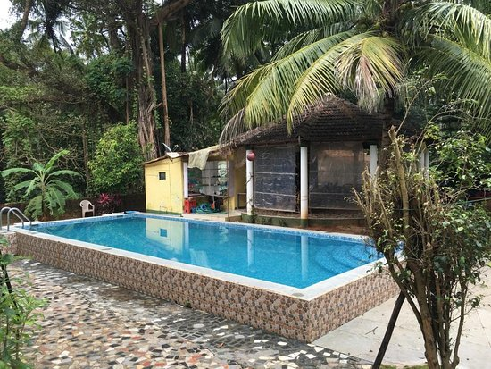 Heaven Goa Guesthouse: Pool