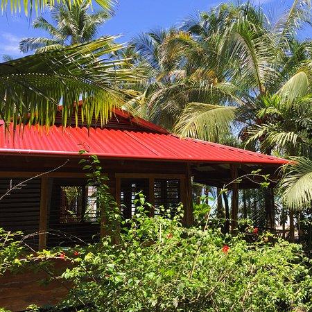 Casa Cayuco: Exterior of beachside cabin - Delphin