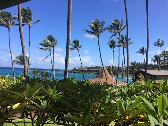 Napili Shores Maui by Outrigger: photo0.jpg
