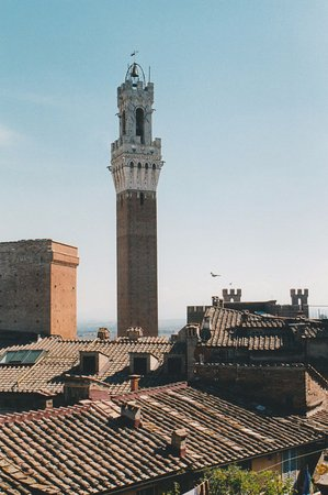 Palazzo Fani Mignanelli : Bell Tower in Piazza del Campo from our Window!