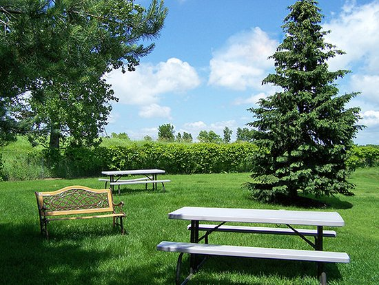 Extended Stay America - Minneapolis - Woodbury: Picnic Area