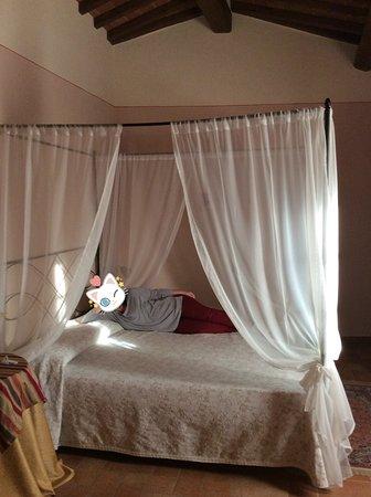 Casale L'Antico Carro : Habitación con cama de dosel