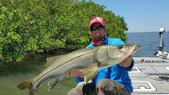Fish Tampa Flats