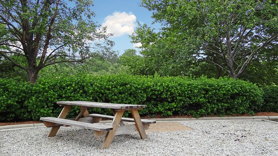 Extended Stay America - Raleigh - RDU Airport: Picnic Area