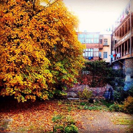 Sololaki Sweet Home Apartments: The courtyard Garden Sololaki Sweet Home