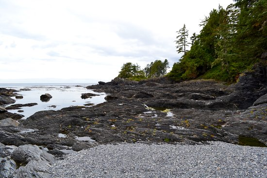 Port Renfrew, Canadá: Botanical Beach