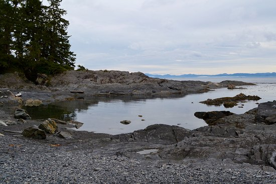 Port Renfrew, Canadá: Botanical Beach inlet