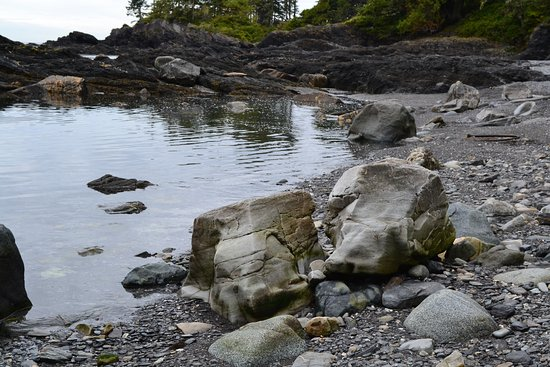 Port Renfrew, Canada: Botanical Beach rock