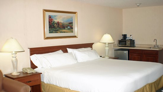 Holiday Inn Express & Suites Ex I-71/ Oh. State Fair/Expo Center: Relax in a king size bed.