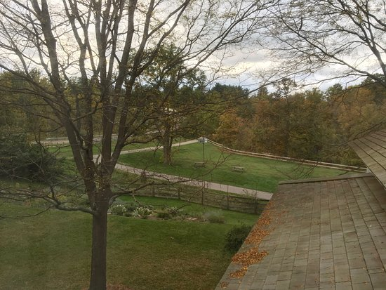Sagamore Hills, OH: View from our window