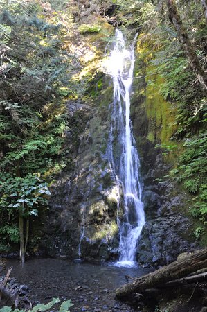 Sequim, WA: waterfalls