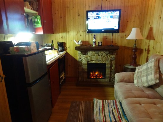 Thornton, NH: living room/kitchenette