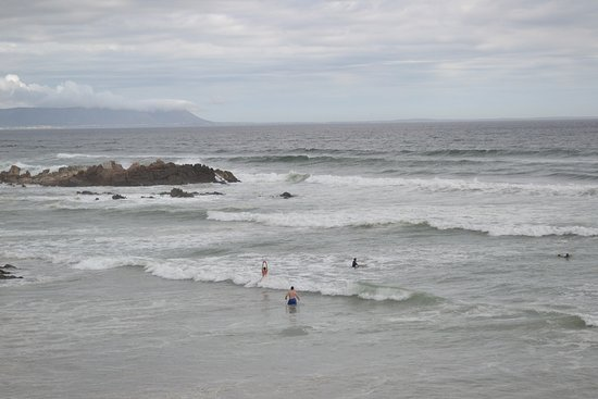 need to be brave to swim in hermanus winter