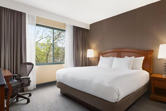 DoubleTree by Hilton Hotel Detroit - Novi: 1 King-sized Bed Junior Suite