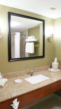 Holiday Inn Express Hotel & Suites Toluca Zona Aeropuerto: Guest Bathroom