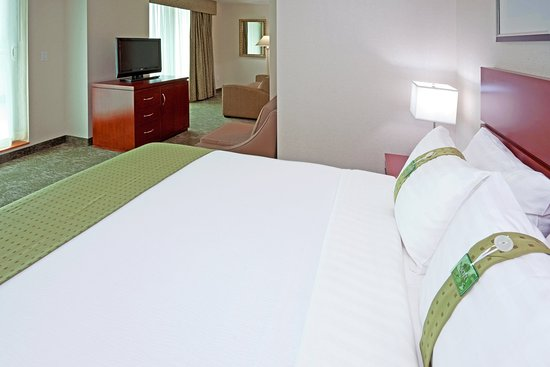 Holiday Inn L.I. City - Manhattan View: Staten Island Suite has one queen bed and pullout sofa