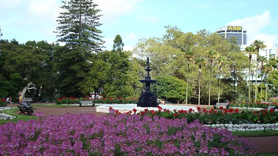 Matakana, Новая Зеландия: Stroll among the flowers of Albert Park to take in their aromas.
