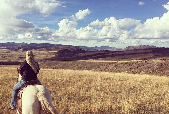Saddleback Ranch: photo1.jpg