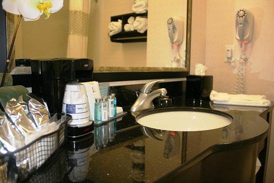Hampton Inn & Suites Athens I-65: Guest Bath