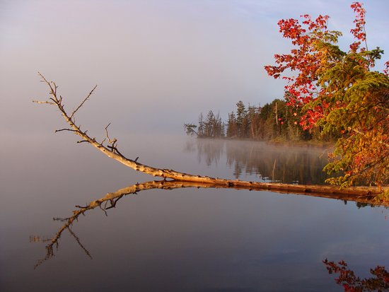 Greenville, ME: Foggy morning view at Spencer Pond Cabins