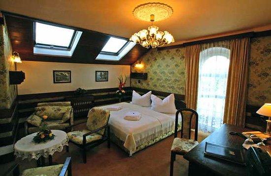 Parkhotel Brno: Hotel room