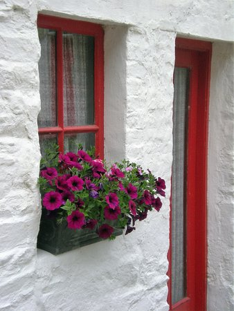 Avoca, Irlanda: Lovely cottage