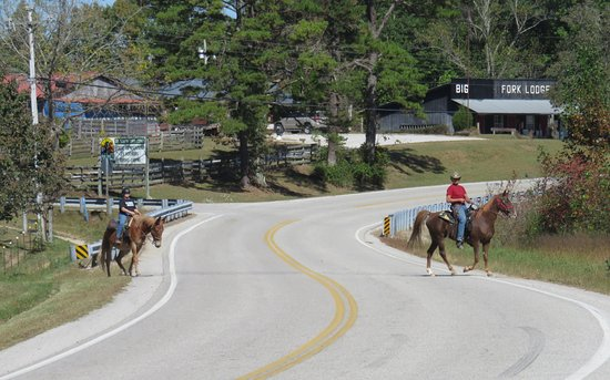 Big South Fork Lodge & Horse Campground : Guests riding directly across the street from out campground to the trail head