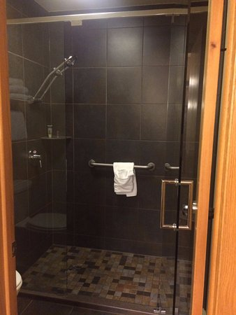 BEST WESTERN Plus Superior Inn & Suites: Shower arm had two heads - one for your back or shoulders!!