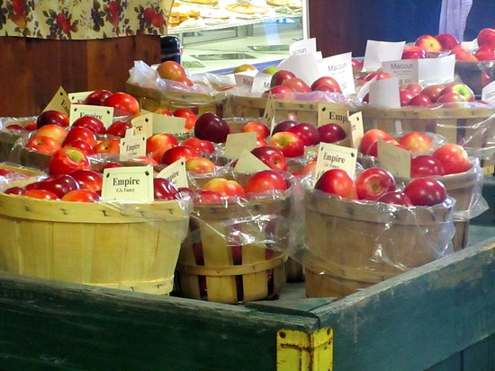 Castleton On Hudson, Nova York: Delicious apples