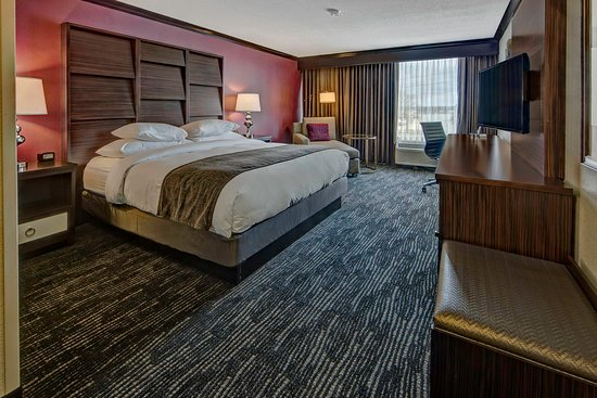 DoubleTree by Hilton Hotel Decatur Riverfront: King Bed