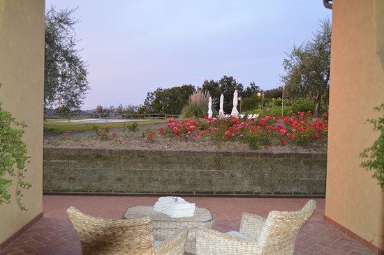 Peccioli, Italien: Terrasse donnant sur la piscine.