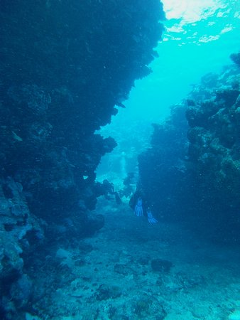 Poindimie, Yeni Kaledonya: Amazing crevices and swimthroughs