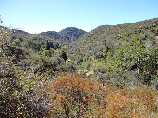 Oak Glen, CA: General view from the lower parts of the loop trail
