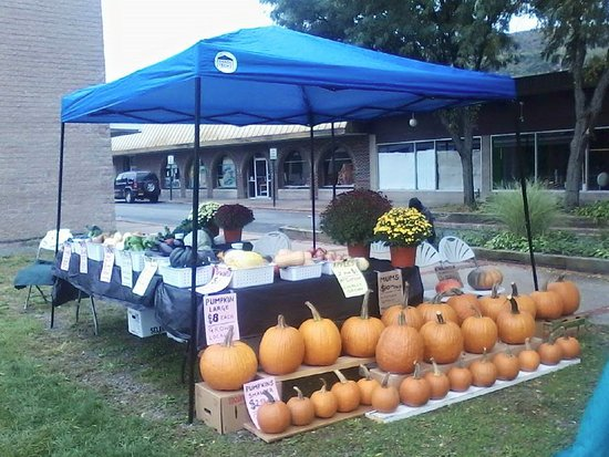 A beautiful fall fruit and veg display at Ellenville Farmers Market 2016. Come along to support