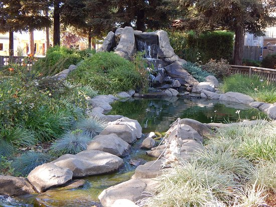 Wheatland, CA: Waterfall and fish pond near the picnic area at Bishops Pumpkin Farm.