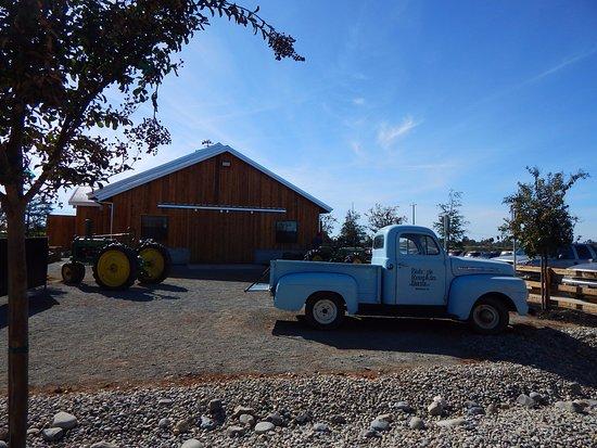 Wheatland, CA: Near the entrance of Bishops Pumpkin Farm.