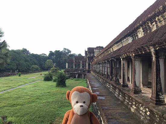David Angkor Guide - Private Tours: Angkor Wat main temple. Follow monkey @smallpaul on instagram