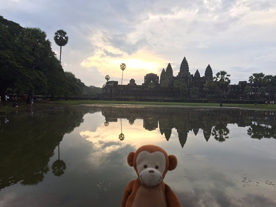 David Angkor Guide - Private Tours: Angkhor Wat, sunrise. cloudy without meatballs
