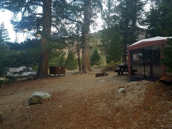 Twin Lakes Campground: Campsite 91
