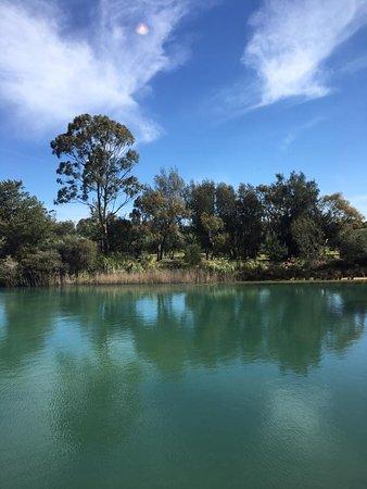 Nuriootpa, Australia: Beautiful views while dining