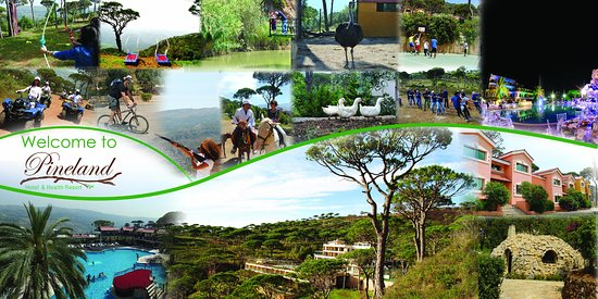 Pineland Hotel and Health Resort : A beautiful escape for families, couples and friends!