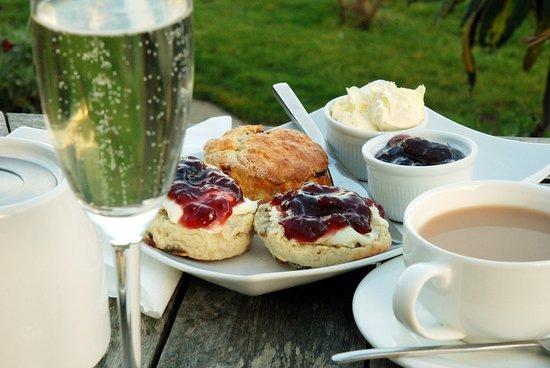"""Trevalsa Court : A """"Sparkling Cream Tea"""" in the garden"""