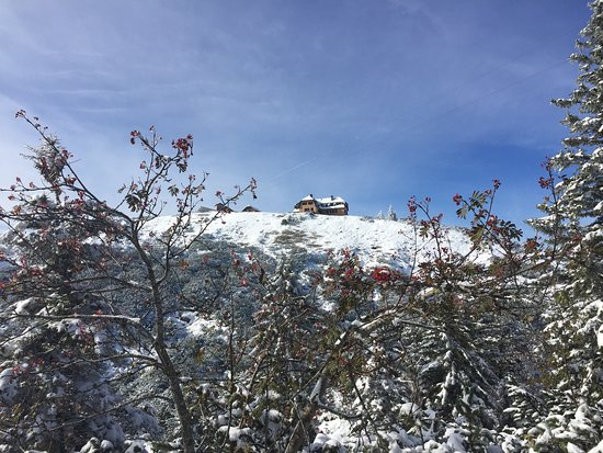 Steinbach am Attersee, Österreich: Hochleckenhaus vom Anstieg