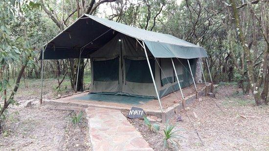 Wajee Mara Camp: IMG-20160710-WA0097_large.jpg