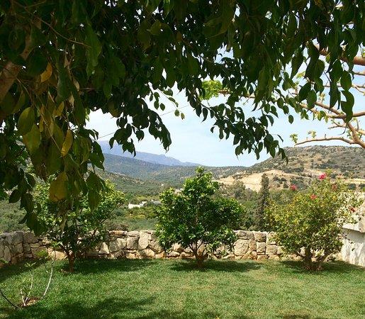 Kalo Chorio, اليونان: eigene Gartenanlage
