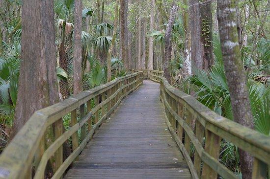 Sebring, Floryda: En af de få gangbroer med gelænder i begge sider.