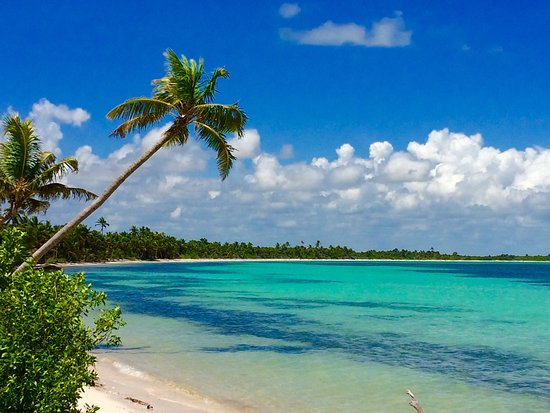 Punta Allen: Beautiful beaches, great reef snorkeling, and friendly little village.