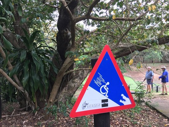 St Lucia, Sudáfrica: Obey the signs!