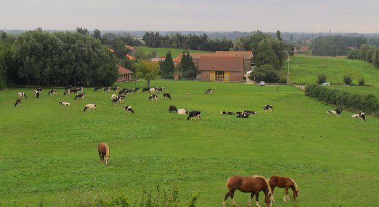 Bailleul, France: Ferme Beck