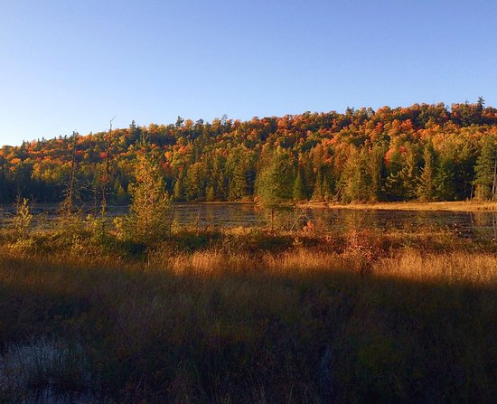 Temiscaming, Canada: Fall Colours